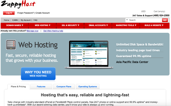 Screenshot of the ZappyHost hosting page