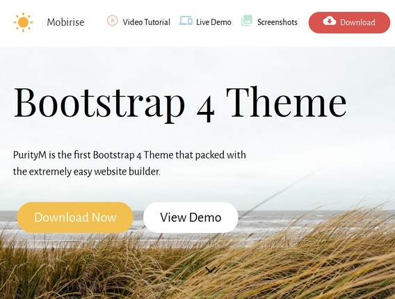Bootstrap 4 template example