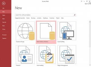 Screenshot of Microsoft Access 2013