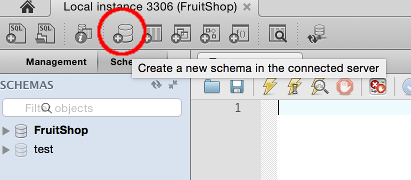Screenshot of the Create Schema icon